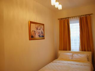 Luxurious apartment for people visiting Belgrade - Belgrade vacation rentals