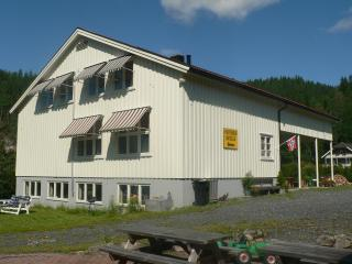 Cozy holiday apartments in southern Norway  !!! - Drangedal vacation rentals
