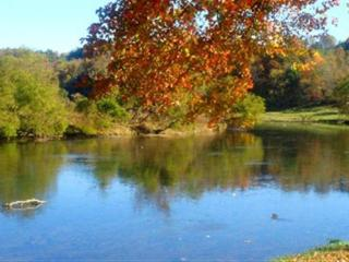 Vacation Log Home-River near Boone,North Carolina - Boone vacation rentals