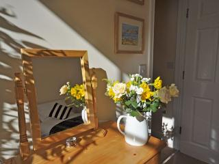 HVIEW - Ilfracombe vacation rentals