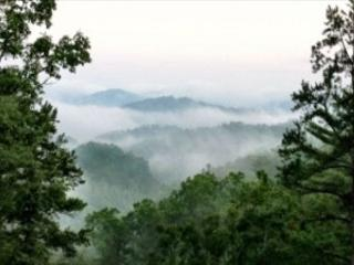 3 Bedroom Theater Cabin With Amazing Views, Covered Decks - Sevierville vacation rentals