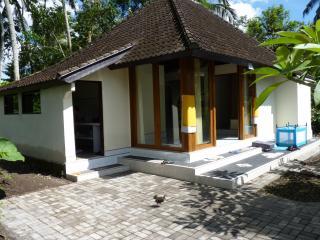 Rumah Cicak Experience Bali near Ubud - Ubud vacation rentals