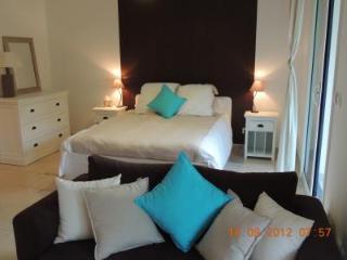 Leandre Studio - Cannes vacation rentals