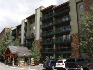 Inviting Ski In/Out 1 Bedroom Condo - Trails End 509 - Breckenridge vacation rentals