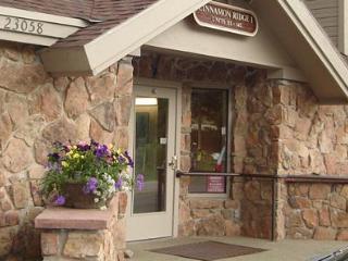 Keystone Condo - private hot tub, walk to slopes! - Keystone vacation rentals