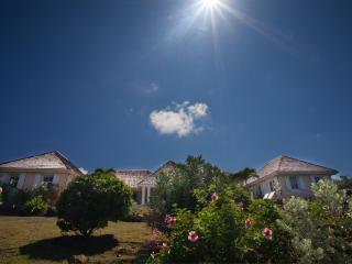 Perfect House with Internet Access and Dishwasher - Saint Barthelemy vacation rentals