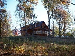 Beautiful Log home, on wine trail, amazing view - Carbondale vacation rentals