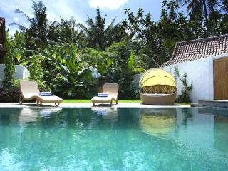 Gorgeous Luxury Joglo Villa - Seminyak vacation rentals