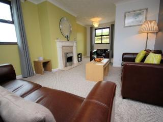 VALVA - Cribyn vacation rentals