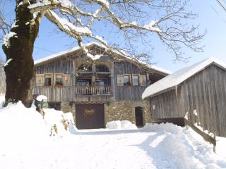 Ski Chalet in Les Gets - Mont Saxonnex vacation rentals