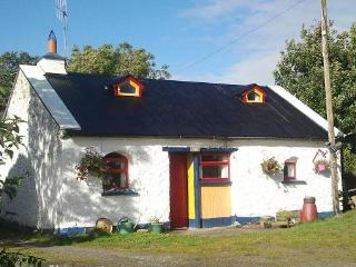 3 Bedroom Cosy Cottage in the heart of Tipperary - Doon vacation rentals