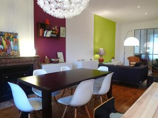 Nice and colorfull loft  in the center of Lyon - Lyon vacation rentals