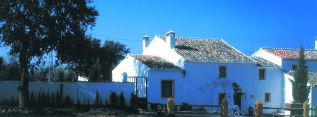 Welcome to La Coqueta - 4 beds & pool Andalucia Malaga/Granada provinces - Fuentes de Andalucia - rentals