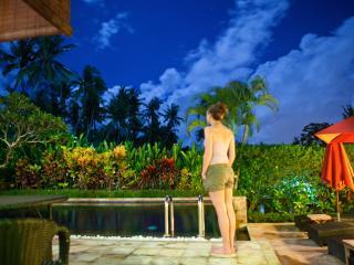 Villa Karvaka - Cepaka vacation rentals