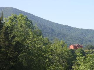 Great for large families -- 3600 sf and 5 Bedrooms - Shenandoah Valley vacation rentals