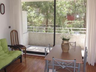 Nice Neighbourhood appartment (flat). - Puyuhuapi vacation rentals