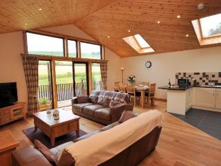 WILLC - Abernyte vacation rentals