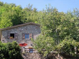 Casa Cappellino - Your Tuscan Vacation Home - Caprese Michelangelo vacation rentals