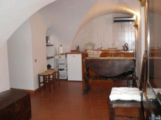 Charming appartment in old florentine tower - Florence vacation rentals