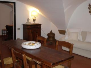 Center Florence,in  old  tower charming appt - Florence vacation rentals