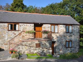 1 bedroom House with Internet Access in Bodmin - Bodmin vacation rentals