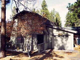 Bear Necessity Cabin - Big Bear Area vacation rentals