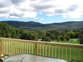 Private, new  3 bedroom, 3.5 baths on 3.8 acre - Stratton and Bromley Ski Areas vacation rentals