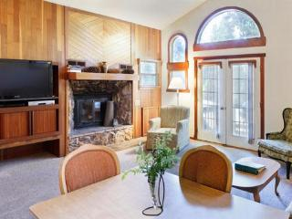 Snowy retreat with heated indoor pool, sauna - Arnold vacation rentals