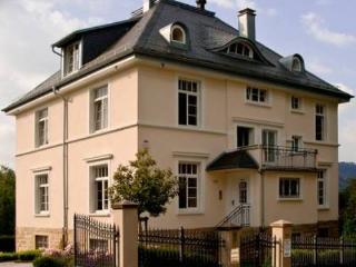 LLAG Luxury Vacation Apartment in Baden Baden - 861 sqft, quiet, central, exclusive (# 3239) - Baden-Baden vacation rentals