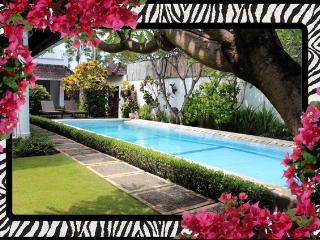 Villa Safari -Spacious Open Plan 3bd/bth A/C WIFI pool Seminyak - walk to all - Seminyak vacation rentals