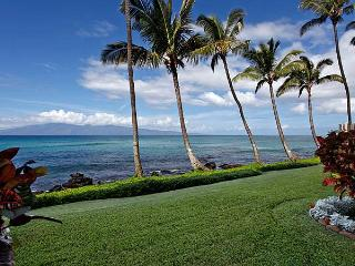 Noelani #103 - Kahana vacation rentals