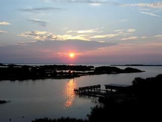 Tranquility Birdwatching VIEW! Booking Summer NOW! - Cedar Key vacation rentals