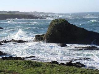 Pine Beach House & a path to the beach - Mendocino - Mendocino vacation rentals