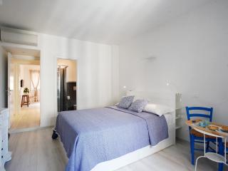 B&B Terminal Teresina - Blue Room - Rome vacation rentals