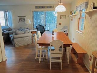 Serendipity Cottage - Damariscotta vacation rentals