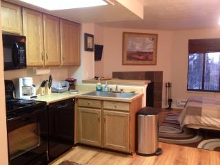 Across from Navajo Lifts! Pool, Jacuzzi, Sauna Timberbrook Studio-Sleeps 4 #108 - Brian Head vacation rentals