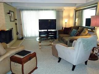 1 Bedroom/1 Bath Condo at Chateau Blanc- Unit 5 - Aspen vacation rentals