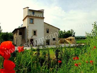 Villa Merla - Massa Martana vacation rentals