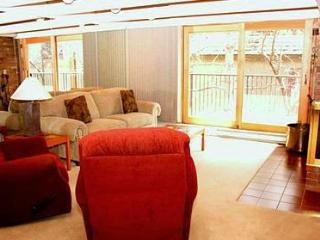 1 Bedroom condo in downtown Aspen- Unit 14 - Aspen vacation rentals
