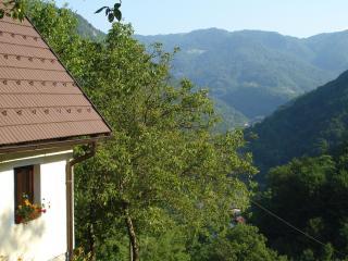 Tilnik Farm Slovenia Rural Retreat Apt 2 sleeps 5 - Cerkno vacation rentals