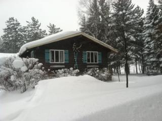 Ski/Year Round Getaway - Colden/Glenwood, NY - Greater Niagara vacation rentals