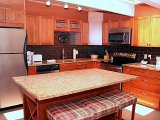 2 Bedroom/2 Bath Condo At Chateau Blanc- Unit 13 - Aspen vacation rentals