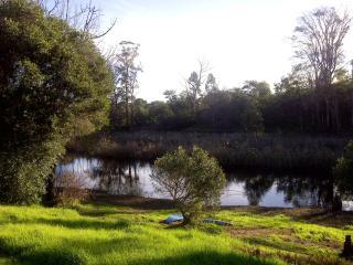 Corgi Park - Stanford vacation rentals