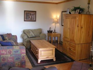 Cozy, Warm Mountaintop Condo w/ Breathtaking Views - Snowshoe vacation rentals