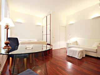 B/T VATICAN AND COLISEUM WIFI STYLISH APT - Rome vacation rentals