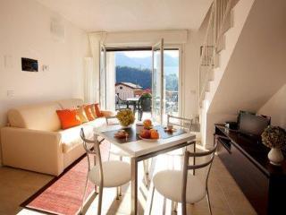 Sunny 2 bedroom Condo in Lenno - Lenno vacation rentals