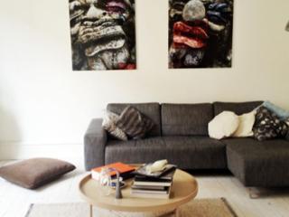 Fully renovated Copenhagen apartment near Vesterport - Copenhagen vacation rentals