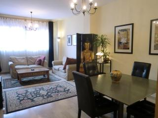 Traditional, 2 bedroom, central Valencia apartment - Chiva vacation rentals