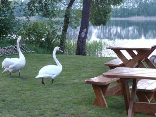 Vila Magdalena on Lake Margis, Trakai - Vilnius vacation rentals
