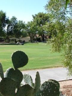 Tucson Arizona 2 Bedroom Luxury on the Golf Course - Tucson vacation rentals